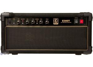 Eden Amplification E300T
