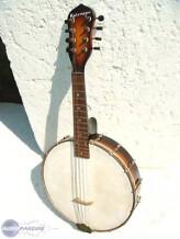 Gibson Banjolin