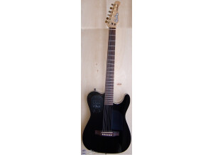 Godin Acousticaster Deluxe