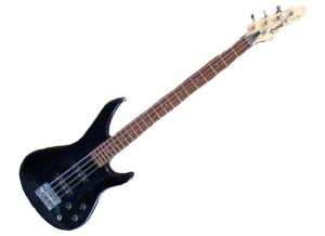Arizona Bass SAB 34
