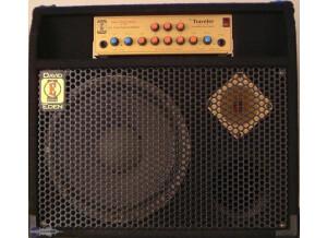 Eden Amplification WT-300 TC12
