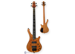 WSL Guitars Play Me Fonky 4