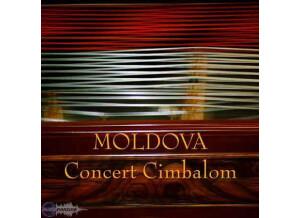 Precision Sound Moldova Concert Cimbalom