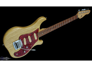 Rees Electric Guitars S3