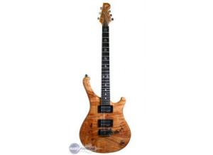 WSL Guitars The Beauty