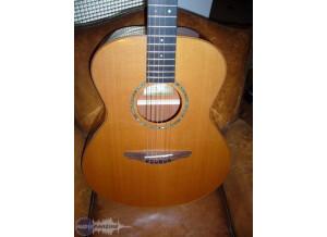 Avalon Guitars A101 gold series