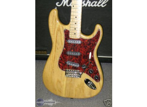 Bill Lawrence USA Swampkaster S