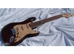 Raven West Guitar K2 RM 999