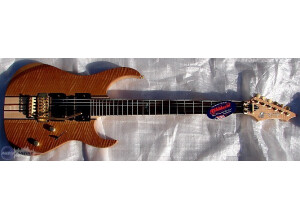 Raven West Guitar RG 770 DX Sycamore Flame