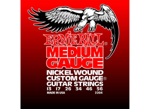 Ernie Ball Electric Nickel Wound w/ Wound G