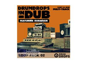 Loopmasters Drum Drops in Dub Vol 2 Pack 2