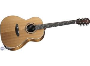 Fender GDO-500S