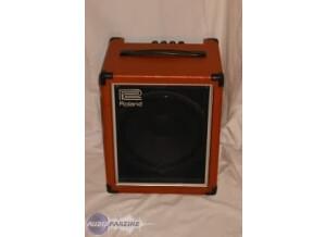 Roland Cube 30 Bass Vintage