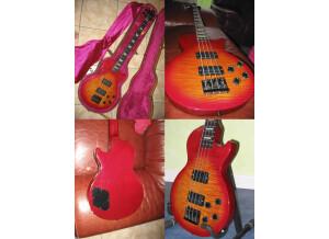 Gibson Les Paul Bass Premium LPB-2