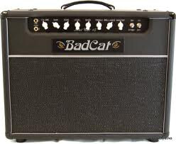 Bad Cat Hot Cat 15