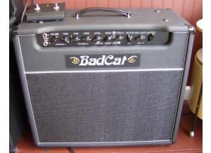 Bad Cat Hot Cat 30
