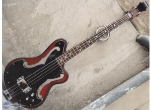 "Ampeg AEB-1 ""Scoll Bass"""