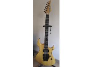 SFG (Steve Fouché Guitars) FF