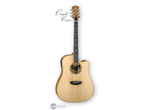 Luna Guitars Oracle Crane
