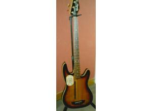 Godin EB-FL Bass