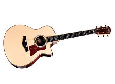 Taylor 800