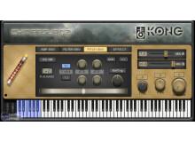 Kong Audio ChineeGuanZi