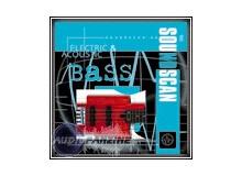 Soundscan 06-Electric & Acoustic Bass