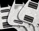 Taylor Loaded Pickguards For SolidBody Classic