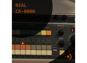 Precision Sound Real CR-8000