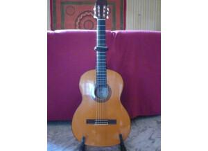 Estruch Guitars Flamenco n°1