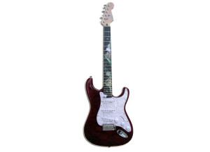 HK Instruments HK E-Gitarre WQS-Inlay