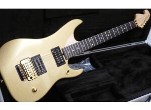 Washburn N4 Gold