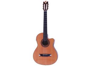 Alhambra Guitars CS-2 CW E2