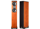 Polk Audio TSI 300