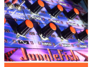 Detunized DTS007 - The Junglefish