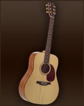 Guitares Boucher Genuine Natural Goose Dreadnought