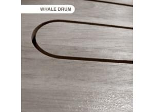 Tonehammer Whaledrum II