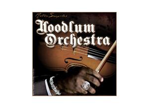 Motion Samples Hoodlum Orchestra