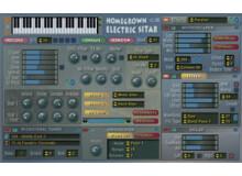 Homegrown Sounds HG Electric Sitar