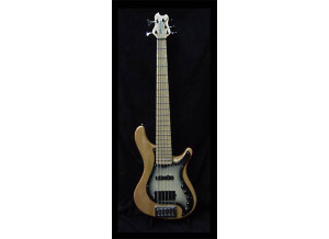 Brubaker Guitars MJX-5