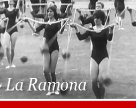 Detunized DTS011 - La Ramona Synthesizers
