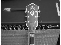 Guild D55 et Fender Concert Reverb